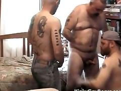 Chubby daddy brook fucks two tattooed studs