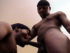 Two attractive black detached friends attractiveness each other's dicks coupled with asses